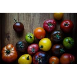 Tomate 'du moment' 500g